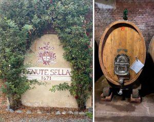 Tenute Sella stone and barrel